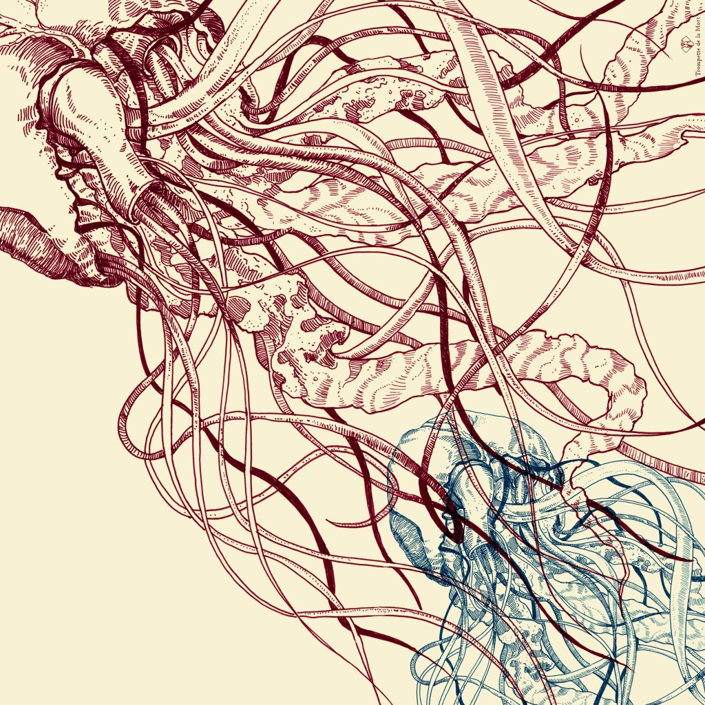 hartkwallenoptie-plus-logo (1)